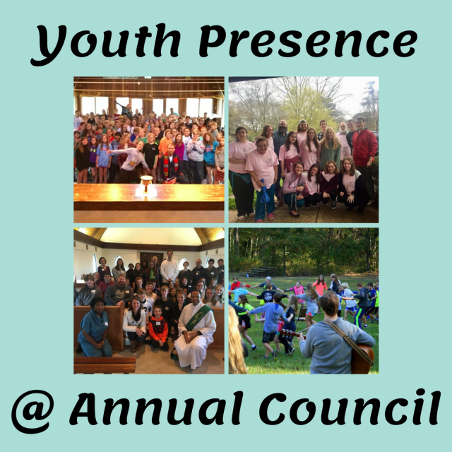 youth @ council